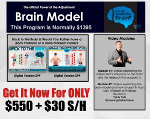 brain model package